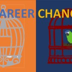 What to expect during a career change